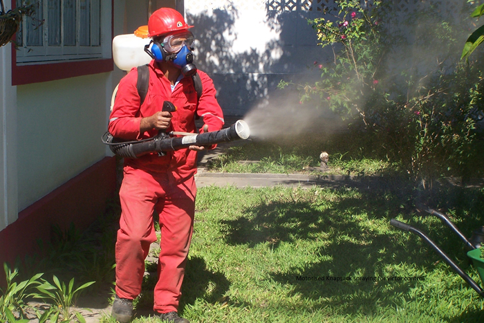 Domestic Spraying for mosquitoes and insects